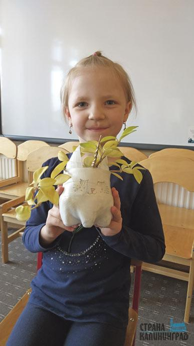 16-Ариана-Молостова,-6-лет,-д_с-№24-%22Василек%22-сделала-из-большой-пластиковой-бутылки-горшочек-«Единорог»-для-цветка-и-подарила-детскому-саду.jpg