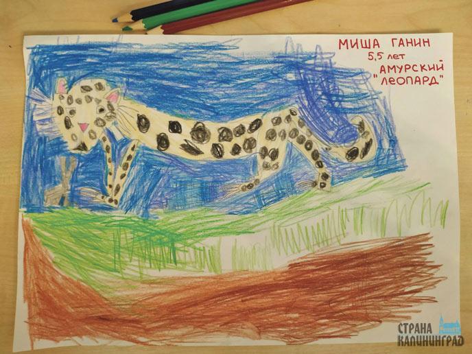 20-Михаил-Ганин-из-д_с--№59,-группа-%22Путешественники%22-нарисовал-амурского-леопарда---животное,-которое-людям-нужно-сберечь.jpg